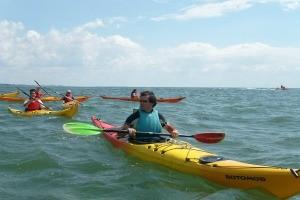 Kayak et aviron