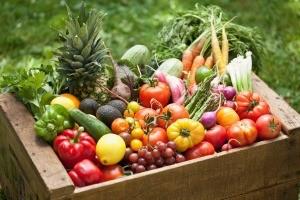 Diététique et produits bio