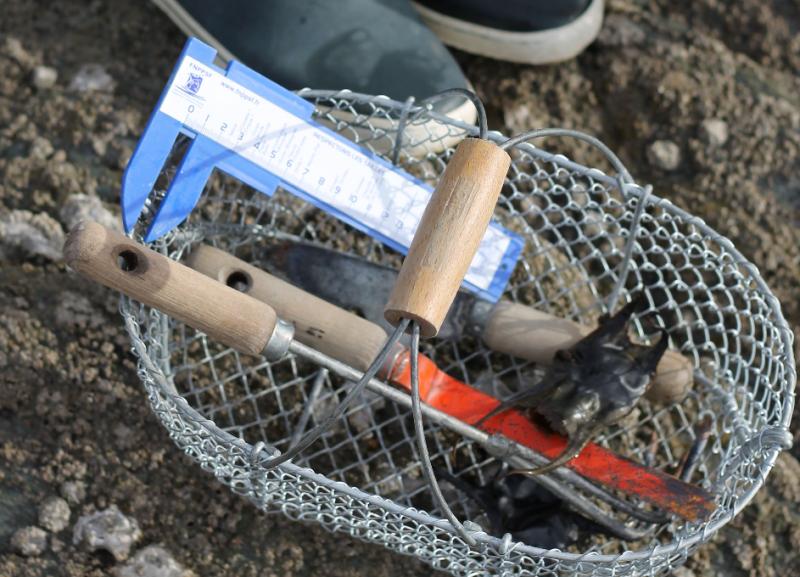 Loisirs (activités, pêche, rando)