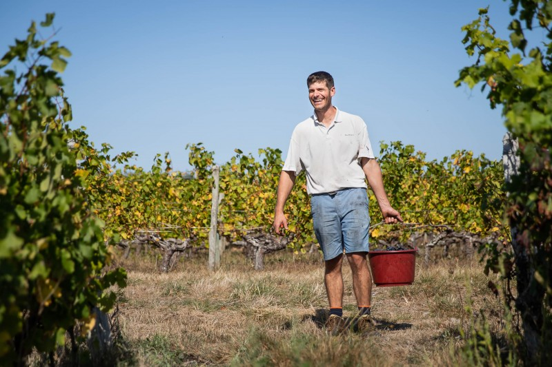 Our winegrowers