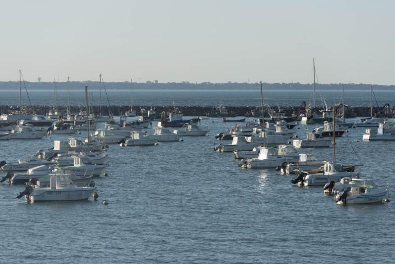 Fishing and pleasure ports