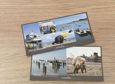 Cartes postales La Plaine sur Mer