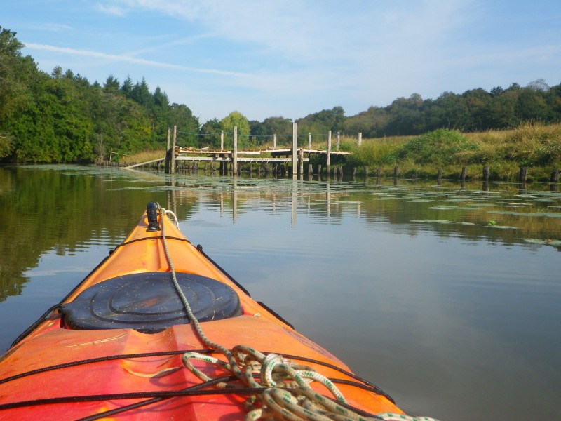 Balade en kayak sur l'Acheneau
