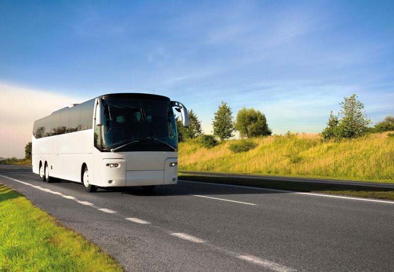 bus-majeczka-fotolia-com-661