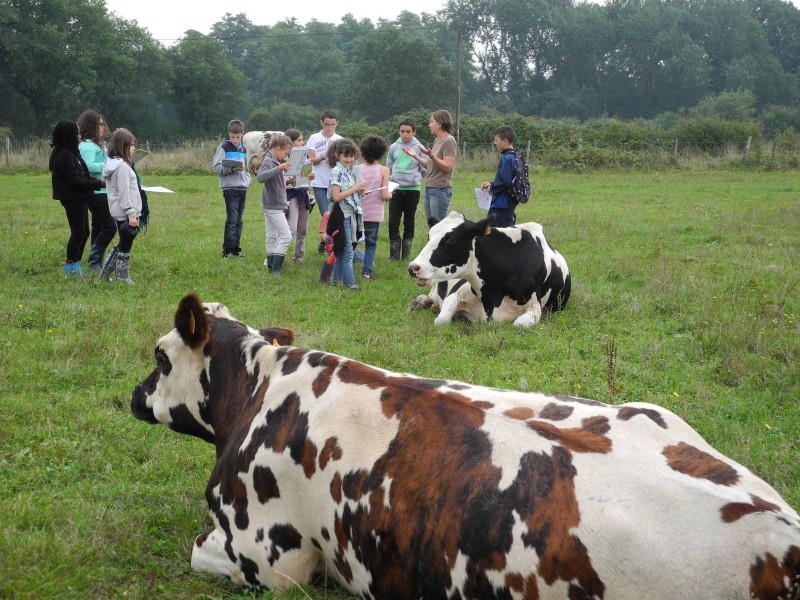 Ferme de la Puillière, Port-Saint-Père, visite à la ferme, bienvenue à la ferme