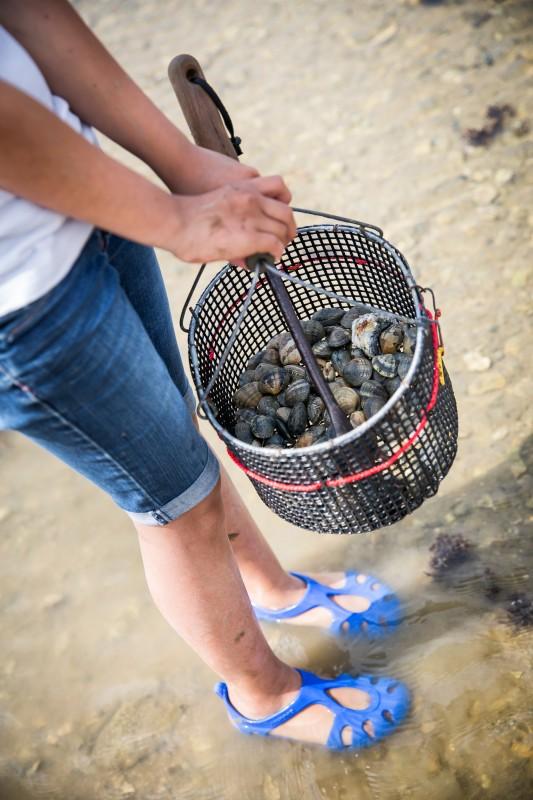 pêche à pied, marée basse, pêcher, grandes marées, pêche à pied Bernerie en Retz