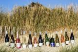 domaine du sillon cotier, muscadet, gros lot, vigneron independant, les moutiers en retz, vignoble, vigne, vin, producteur, pays de retz, destination pornic