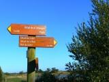 circuit de la baie, rando, randonnée, itinéraires touristiques, rando bord de mer, mer, nature, campagne, marais, pecherie, les moutiers en retz