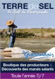 Terre de sel, marais salants, guérande, visite, boutique, exposition