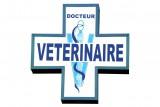 Clinique Vétérinaire de l'Europe Pornic