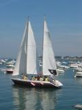 école de voile, balades en mer, activités nautiques