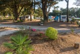 camping bord de mer, bungalow bord de mer, camping tharon plage, camping st michel chef chef, mer