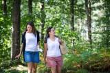 Randonnée pédestre, nature, arbres, promenade, bois, forêt, pays de retz, chéméré