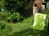 jardin-naturel-14847