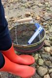 Kit pêche à pied, pied à coulisse, panier, découverte pêche à pied