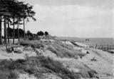 Le manoir de l'Hermitage, ermitage des dunes, hermitage, batisse, rené millet, histoire, belle villa, demeure, bois millet, les moutiers en retz