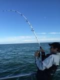 Pêche Promenade -
