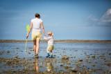 pêche, huîtres, marée basse,