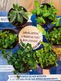 Plants Les Hameaux Bio Pornic