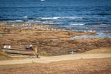 Pointe Saint-Gildas, assis face à l'océan, réserve naturelle régionale, pointe st gildas prefailles, rnr prefailles, pointe st gildas destination pornic