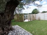 sweet-garden-p5310760-17643