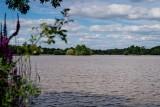 Les étangs de Bourgneuf, étangs Bourgneuf, étangs villeneuve, étangs fresnay, étangs pornic, pêche loire atlantique