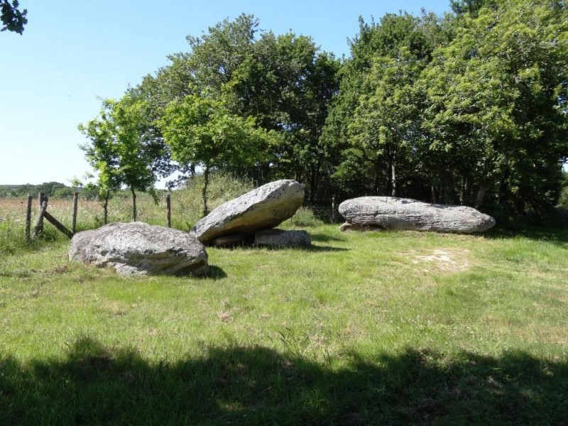 dolmen-des-platennes-dr-copie-site-16192