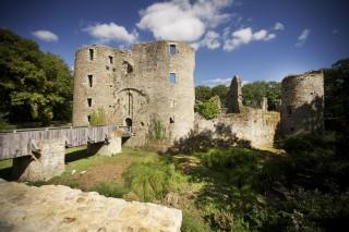 chateau-de-ranrouet-herbignac-17-retaillee-13813