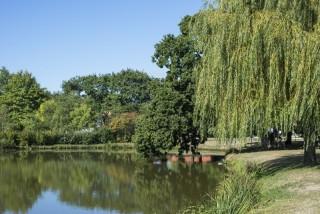 Le parc de Loisirs - Chauvé