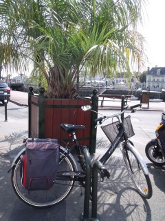 parking-velo-devant-la-poste-mai-2011-1-2904
