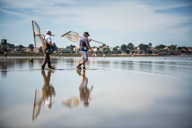 Pêche à pied plage d'Anjou St Michel Chef Chef