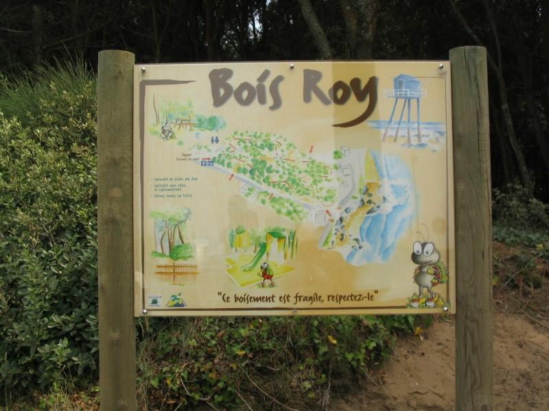 LE BOIS ROY