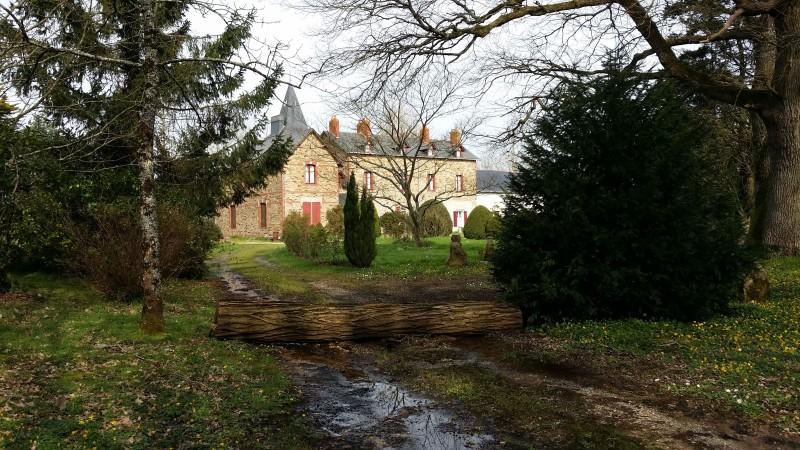 chateau-du-bois-corbeau-9-mars-2020-vue-depuis-l-allee-avec-tronc-d-arbre-ephemere-002-16272