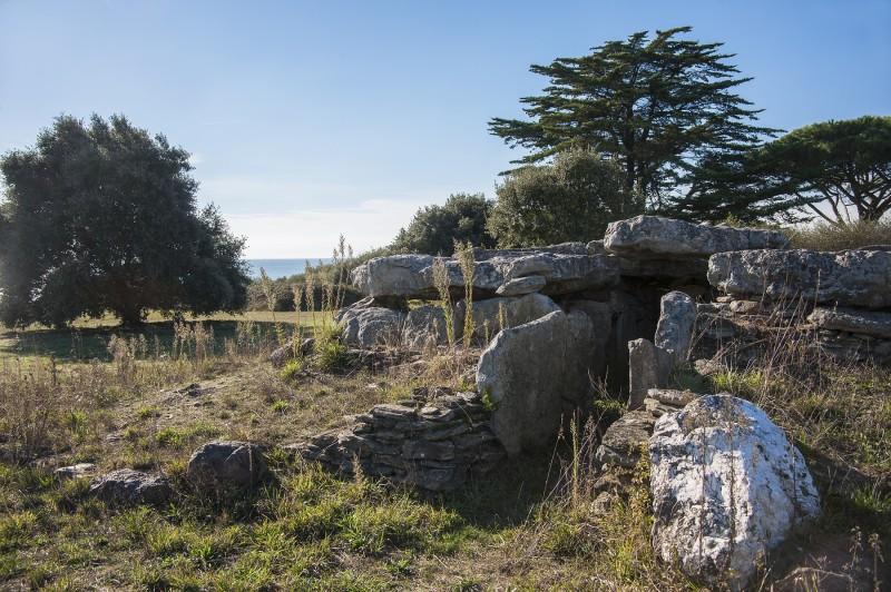 Dolmen de la Joselière © Patrick Gerard