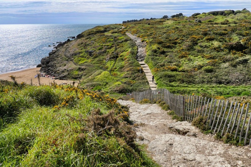 Lande d'Ajoncs - Sentier côtier Préfailles
