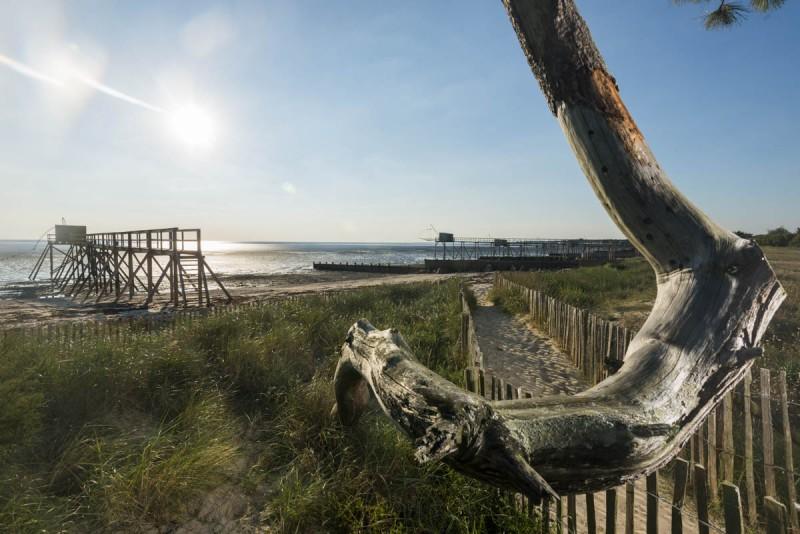 plages, plages sauvages, cordon dunaire, pecherie, lancastria, lyarne, collet, les moutiers en retz