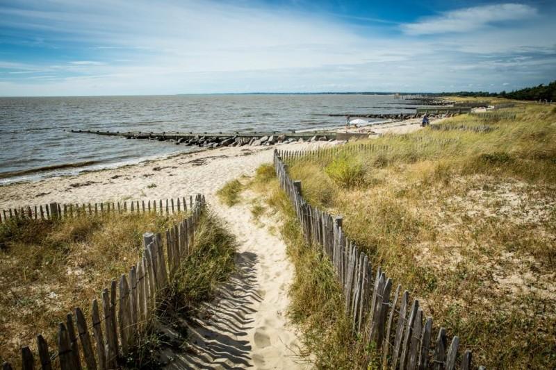 dune du collet, cordon dunaire, ganivelle, espace naturel sensible, réserve naturelle, plage, moutiers, les moutiers en retz