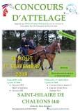 concours d'attelage, étrier picotin, cheval, chevaux, courses, cariole, charette, st hialire de chaleons, saint hilaire