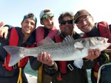 Laurent Mottier - Guide de pêche - retzpeche