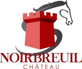LE CHATEAU DE NOIRBREUIL - CHAUMES EN RETZ