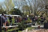 la plaine-sur-mer, fête des plantes, avril, jardin des lakas, pepinieristes, fleurs, plantes, printemps