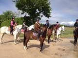 pornic équitation centre équestre balade cheval randonnées poney stage manège