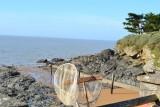Visites enfants pêche sur le littoral, crustacés, coquillage