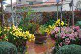 visites-pornic-par-les-pornicais-le-jardin-du-plessis-brigitte-bachelier-3-22518