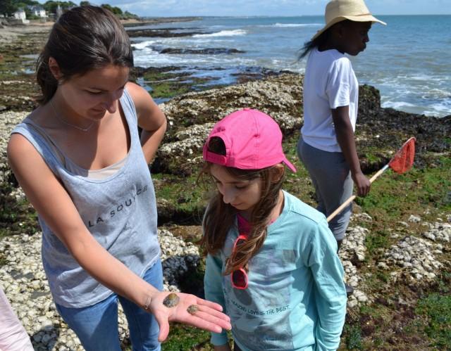 Visite enfant Pêche à pied et littoral