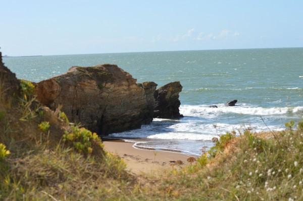 Sortie nature : Escale sur la côte sauvage par Echos Nature
