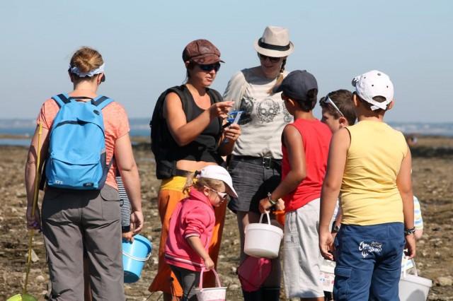 Sortie nature : En route pour la pêche à pied avec Échos Nature