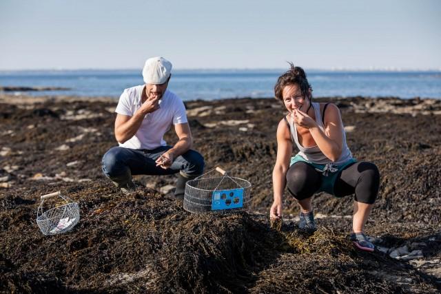 Sortie nature : Les algues, nouvelles saveurs marines
