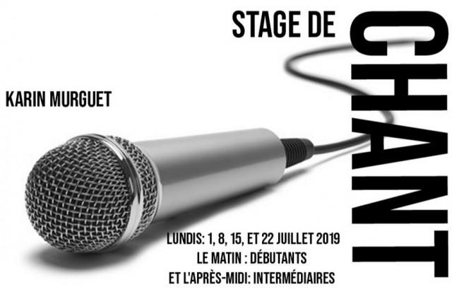 stage-de-chant-28483