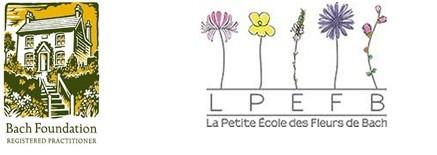 ATELIER PERMANENCES FLEURS DE BACH PORNIC LA BERNERIE